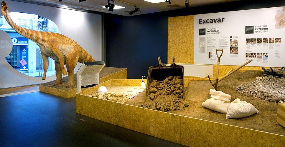 8_MuseuPaleontologia_expo_excava_dino