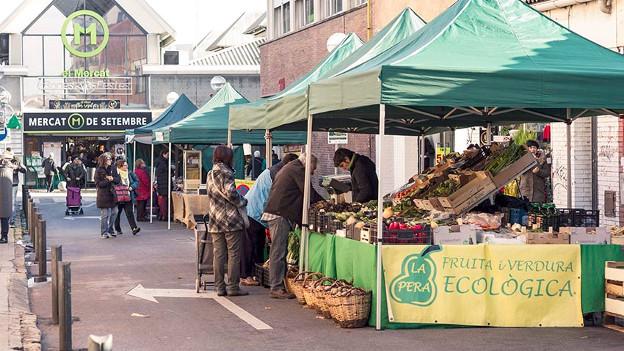 mercat-ecologic-itinerant