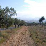Itinerari Camí Romeu