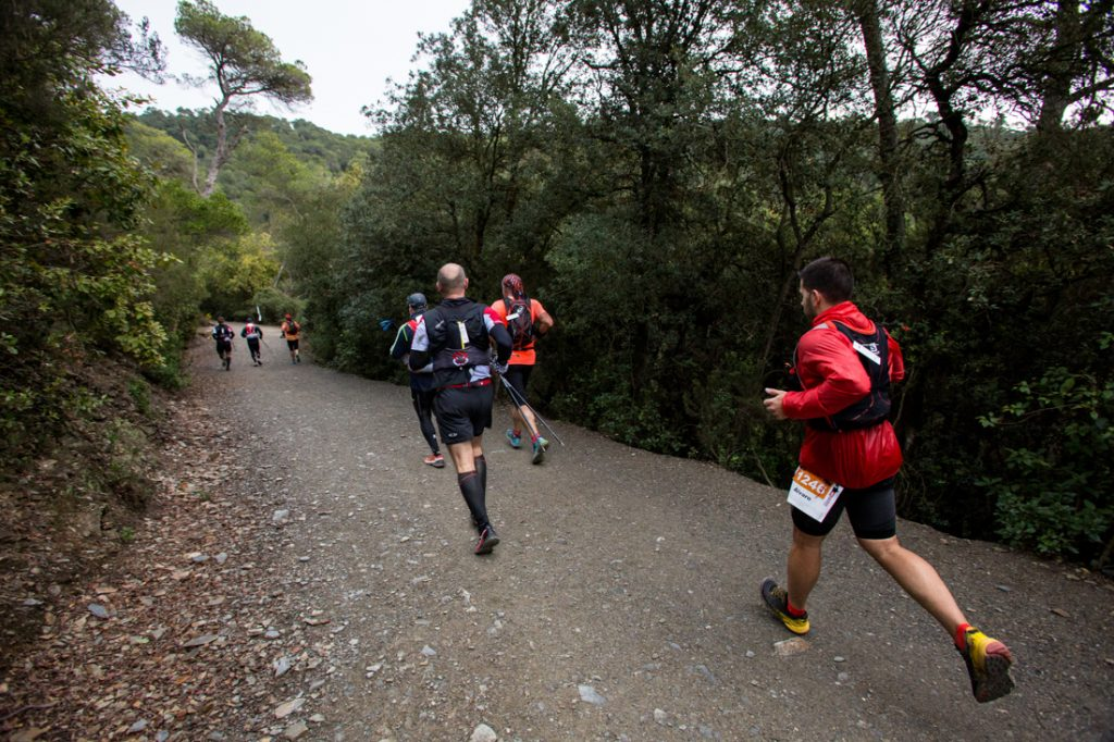 Trail Collserola 18
